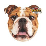 English Bulldog Pet Faces Cushion